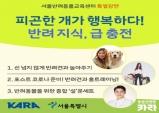 서울반려동물교육센터 교육, 올 해 마지막 참가자 모집