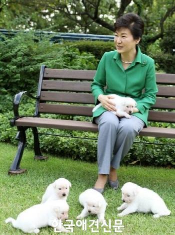크기변환_박근혜 대통령과 진돗개들.jpg