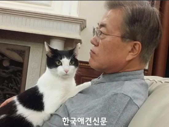 크기변환_찡찡이와 문재인 대통령.jpg