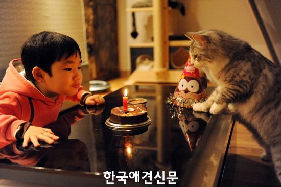크기변환_속표지 1- 다산이와 쿤이가 함께한 '제7회 동물사랑 사진 공모전' 입상작품.JPG